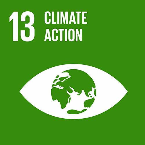 SDG - Climate Action - 13.jpg