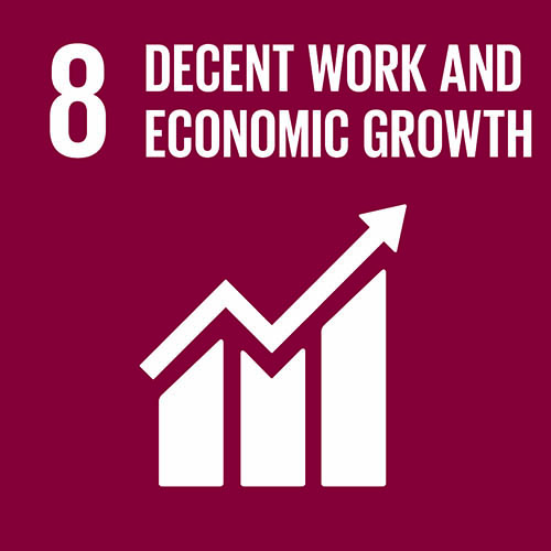 SDG - Economic Growth - 08.jpg